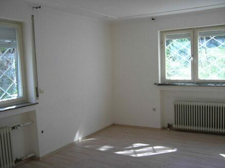 Einfaches Einzimmerappartement in ruhiger Gewerbelage, Korntal,frei