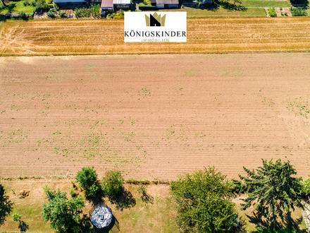 Visionäre aufgepasst: günstiges Bauerwartungsgrundstück in projektiertem Neubaugebiet in Nellingen