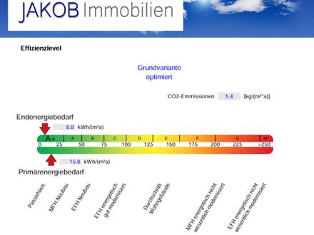 CO2 neutrales wohnen, staatlich gefördert. Bis zu 60.000,- € geschenkt! 4-Zimmer-Wohnung in der Größe eines Hauses!