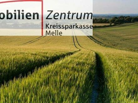 Gegen Gebot! Ländliche Flächen/Wald in Melle-Westerhausen!