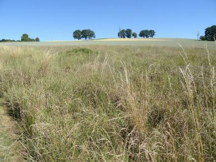 Es werden zwei Grundstücke mit einer Gesamtfläche von 2.140 m² verkauft.  Gemarkung...