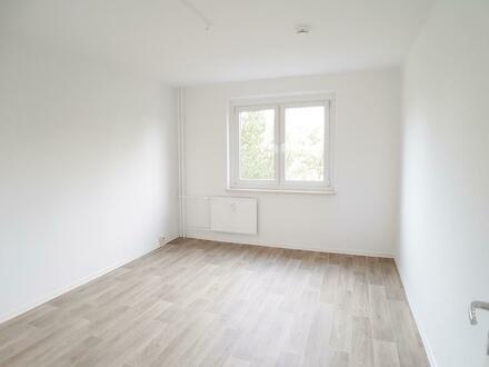 Süße Stundenten-Wohnung sucht einen Mieter