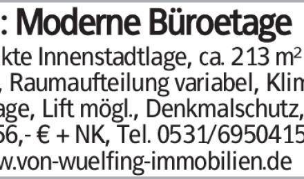 Gewerbe in Braunschweig (38100)