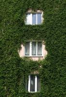 Natürliche Klimaanlage