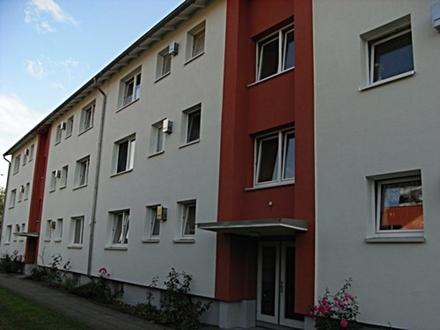 frisch renovierte 3 Zimmer Wohnung mit Balkon