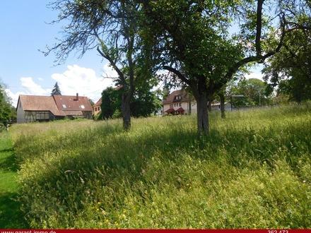 Altes Bauernhaus auf großem Grundstück