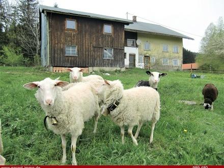 ****** Bauernhaus mit Pferdestall bei Weitnau (Kernsanierung notwendig ) ******