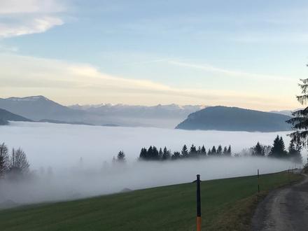 Wohnvergnügen in unverbaubarer Panoramalage über der Nebelgrenze am beliebten Gaisberg!