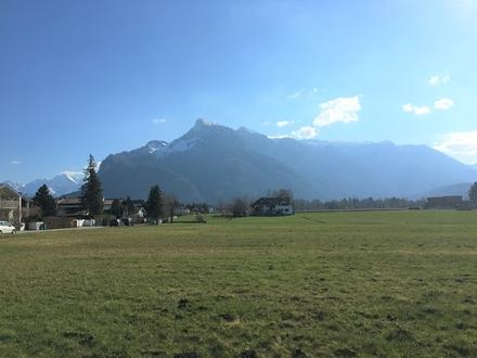 Grünland-Panorama! Grundstück mit Altbestand und unverbaubaren Aussichten