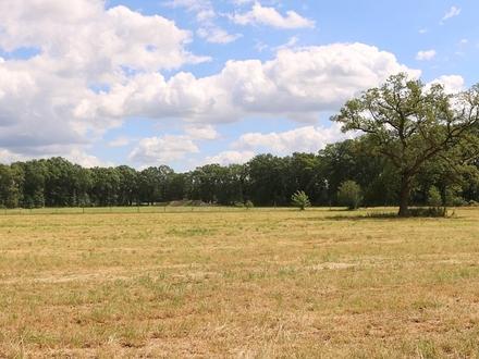 ca. 2,5 ha Grünlandflächen in Bad Zwischenahn-Rostrup