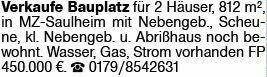 Wohnen in Saulheim (55291)