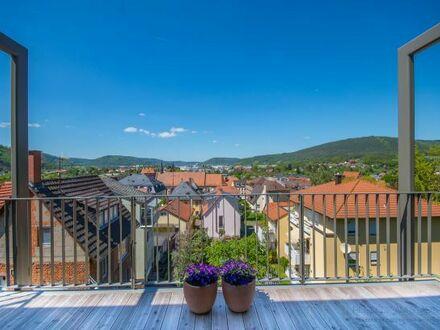 Traumwohnung mit unverbaubarem Blick auf die Miltenberger Altstadt (incl. Küche)