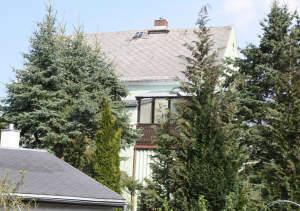 Großes, grünes Haus in Hainichen!