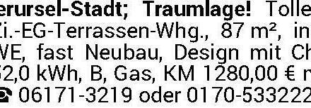 Oberursel-Innenstadt! Traummieter für Traumwohnung gesucht! Geniale 3-Zi.-Terrassenwhg. in Toplage!