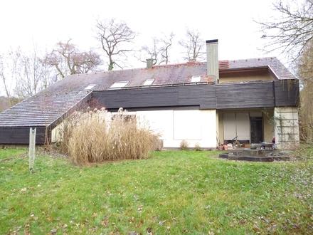 Rarität - Wohnen am Main: Zentral und im Grünen gelegene 3-4 Zi.-Stadtwohnung mit Dachterrasse