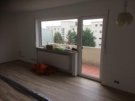 sanierte 3 ZKB mit Balkon und Kellerraum in KH-Winzenheim