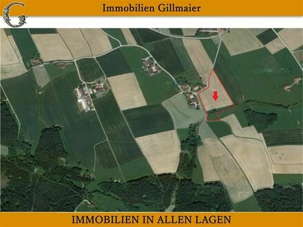 Immobilien Gillmaier - ca. 29.466 m² Ackerfläche mit guter Zufahrt!
