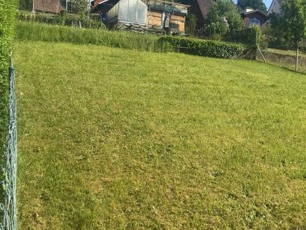 TOLLE AUSSICHT! Schöner Bauplatz in Miltenberg für eine Doppelhaushälfte zu verkaufen