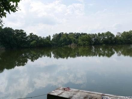 6,7 ha Freizeitgrundstück mit Teich und Wald