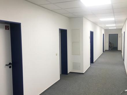 Großzügige Büroflächen in Reichenbach mit Stellplätzen vor der Tür!