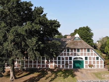 Reetdach - Bauernhaus mit Fachwerk im Dornröschenschlaf nahe Oldenburg