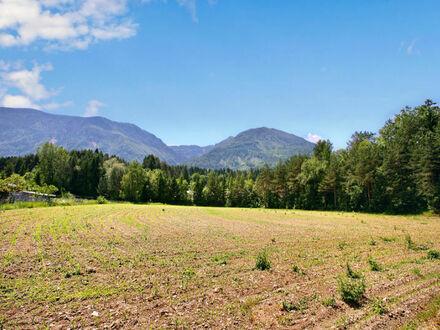 Gallizien: Großes, ebenes Grundstück ideal für Selbstversorgerprojekt oder Bauträger
