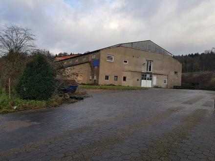 Große Gewerbehalle in Detmold / Mosebeck zu verkaufen