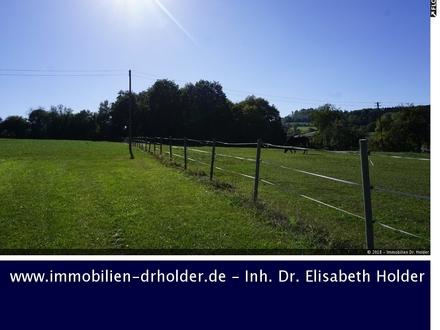 Schönes Grundstück für Ihre Reitanlage, Kauf, Uttenweiler