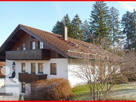 Gepflegte 3-Zimmer-Souterrainwohnung am Waldrand in Rabenstein