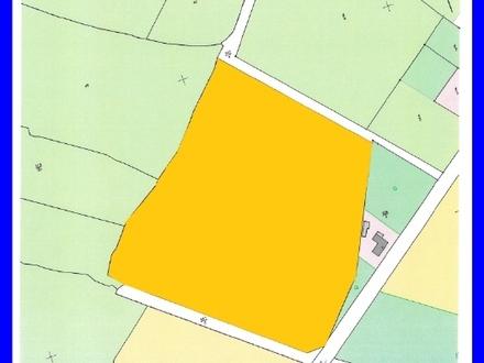 4,0765 ha Grünland in Westerstederfeld