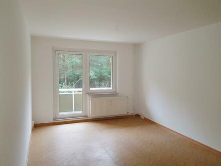 Frisch renovierte 3-Raum-Wohnung sucht Sie! *Mit Neumietergutschein