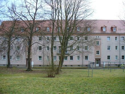 Schnell zugreifen - Renovierte 2 Raum Wohnung, Bad mit Fenster und Wanne