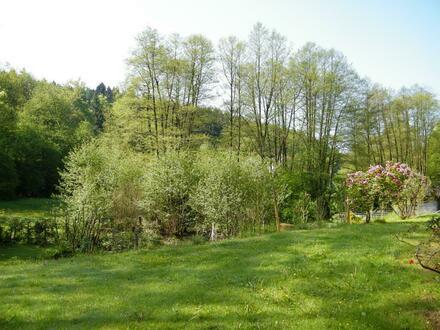Ideales Anwesen für Mehrgenerationenhaus in Mespelbrunn