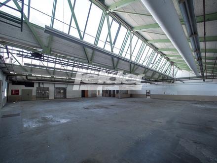 Lagerhalle, bis Ende 2019 befristet anmietbar