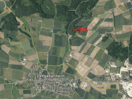 Waldfäche in Langenaltheim