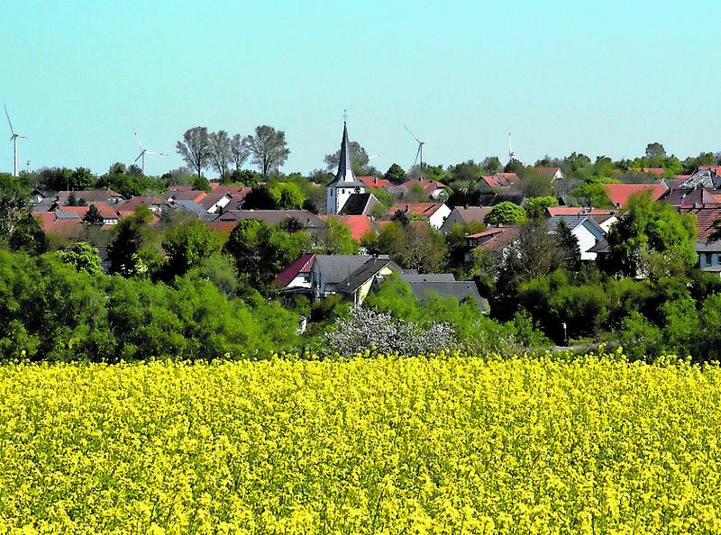 Zwei Landwirte im Haupterwerb und einige Nebenerwerber sind auf den weitläufigen Feldern rund um die Gemeinde  Morschheim  tätig.