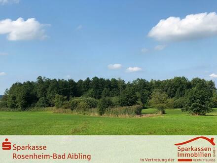 Nähe Simssee - im Landschaftsschutzgebiet