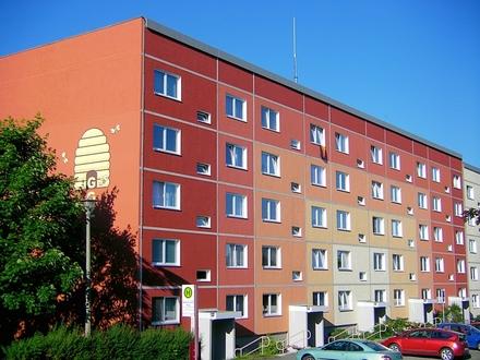 Gemütliche 2-Raum Wohnung mit Blick ins Erzgebirge
