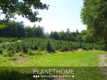 Land- und Forstwirtschaftliche Flächen