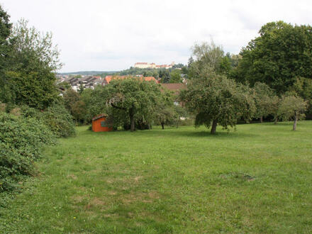 Exklusives Baugrundstück in Ellwangen in einmaliger Lage