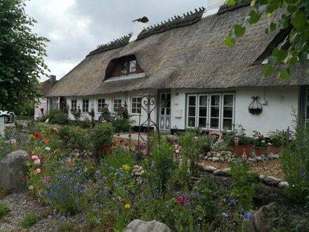 Saniert und Modernisiert: Reetgedeckter Resthof mit Nebengebäude und großem Garten