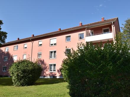 Frisch saniert + sofort frei: 4-Zi Wohnung in der begehrten Ravensburger Galgenhalde