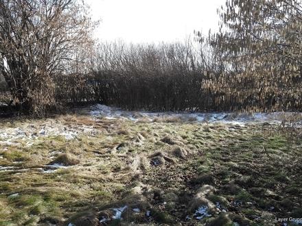LAYER HAUS AG: Grundstück für EFH in Königsbrunn, Landsberger Str. zu kaufen