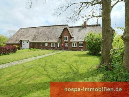 Denkmalgeschütztes Reetdachhaus in idyllischer und naturverbundener Lage