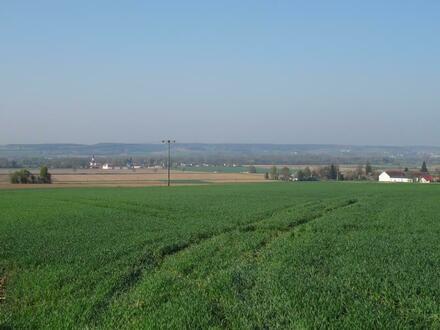 Es wird ein Grundstück mit einer Fläche von 7 855 m² verkauft.  Bodenbonität...