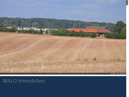RESERVIERT --- Grandiose Lage - Vierkantenhof in Urbach (Thüringen)