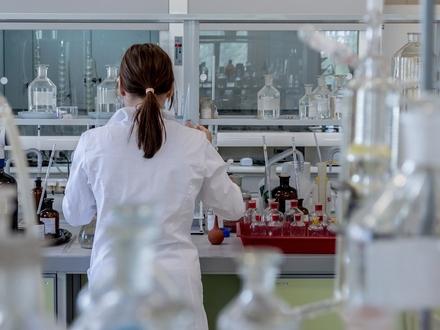 Labor- oder Bürofläche frei gestaltbar. Nähe Düesbergpark 300-650 m²