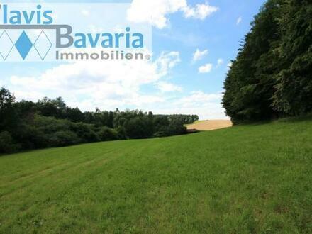 ökologisch extensiv genutzter landw. Grund ca. 16 400 m² (verp.) und 30-j. Mischwald ca. 8 300 m² Nähe Aidenbach