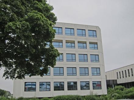 Großzügige, helle, frei gestaltbare Büroflächen