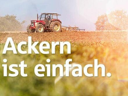Ackerland in Dötlingen-Nuttel zu verkaufen